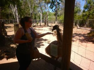 Bravely feeding the emu, and finding it was not so bad after all. And I still have all my fingers!